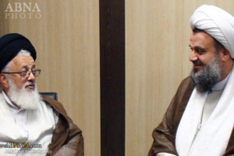 نشست نماینده مقام معظم رهبری در عراق با آیتالله هادوی تهرانی